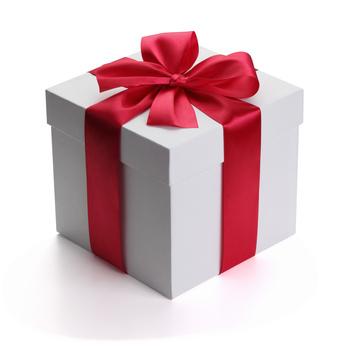 Cadeau Image offrez un cadeau original : une séance de portrait de famille afin d